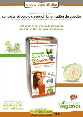 CAFE VERDE +GARCINIA 500ML PINISAN